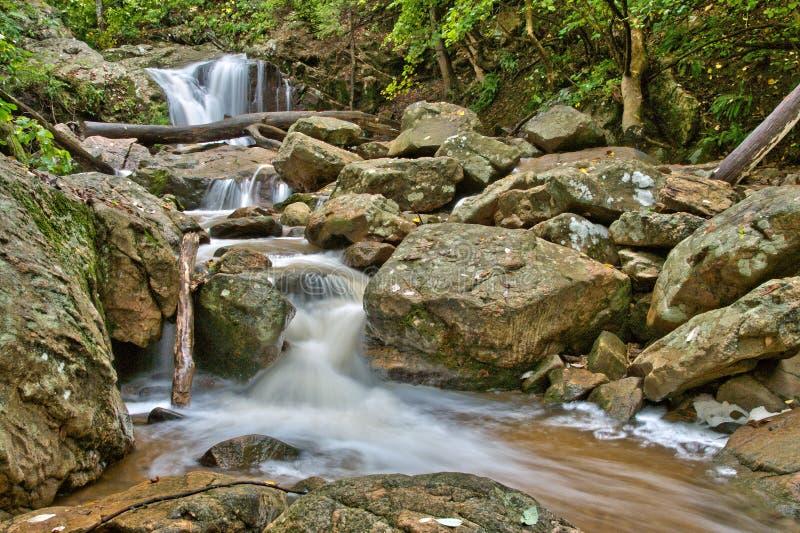 Cascate precipitanti a cascata del terreno boscoso fotografie stock libere da diritti