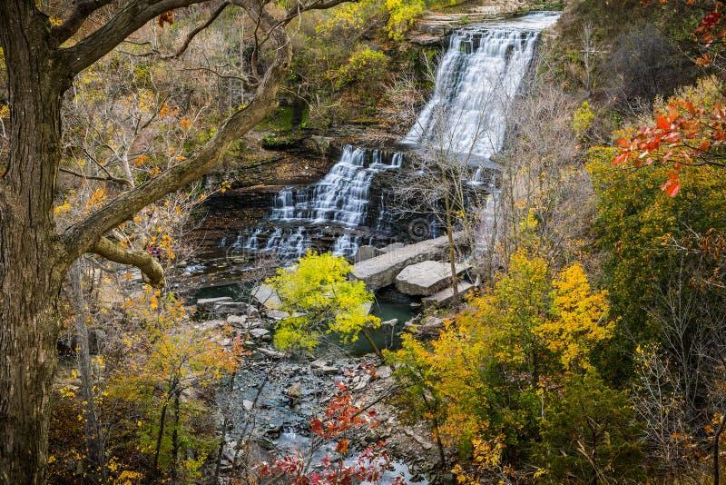 Cascate precipitanti a cascata sceniche in autunno del sud di Ontario fotografia stock libera da diritti