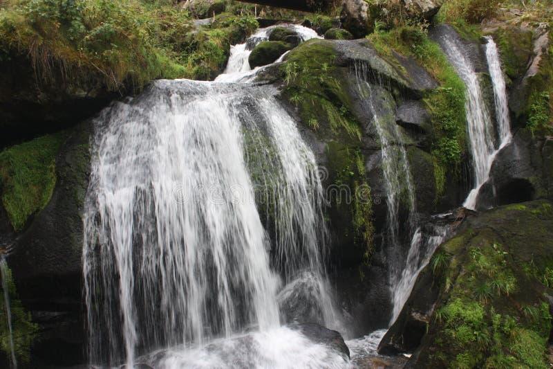 Cascate Schwarzwald Germania di Triberg immagine stock