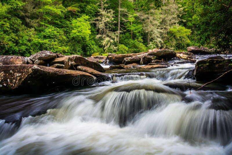 Cascate su poco fiume, nella foresta dello stato di Du Pont, Nord Carolina fotografie stock libere da diritti