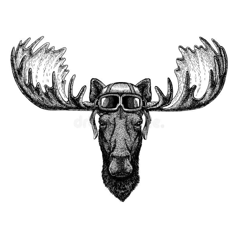 Casco animal del aviador que lleva con los vidrios Cuadro del vector Los alces, alces dan el ejemplo exhausto para el tatuaje, em stock de ilustración