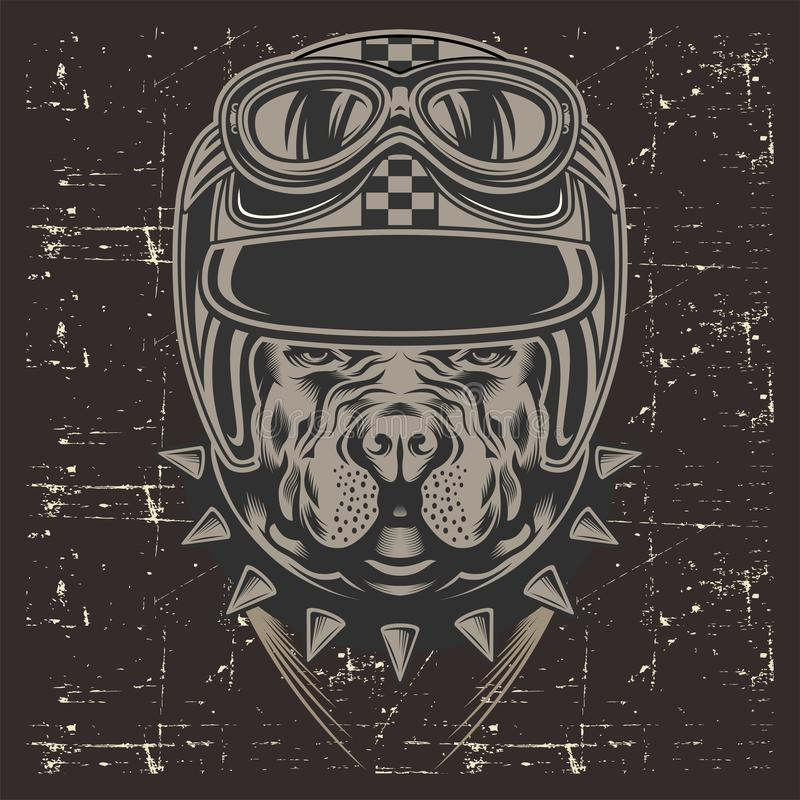 Casco que lleva retro, vector del pitbull del estilo del Grunge del dibujo de la mano ilustración del vector