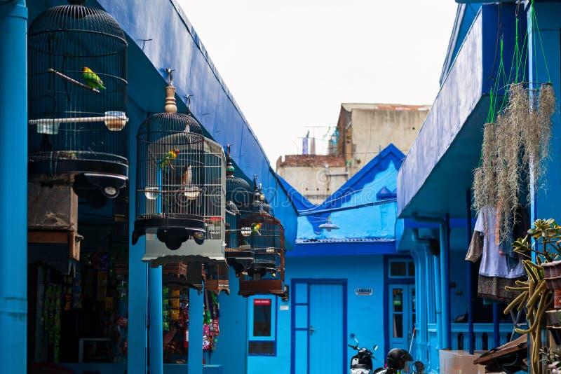 Case blu con le gabbie degli uccelli canori in villaggio Kampung Biru Arema fotografia stock