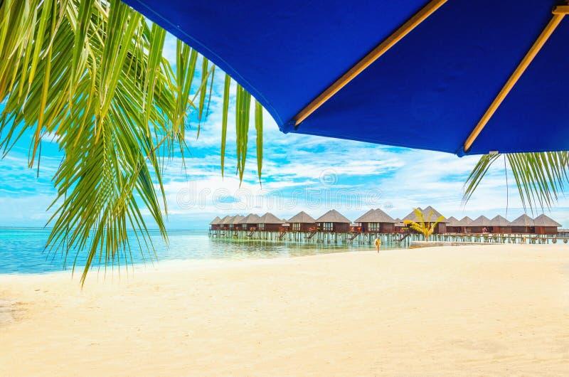 Case di legno esotiche sull'acqua e sulla foglia di palma con l'ombrello di sole blu fotografia stock libera da diritti