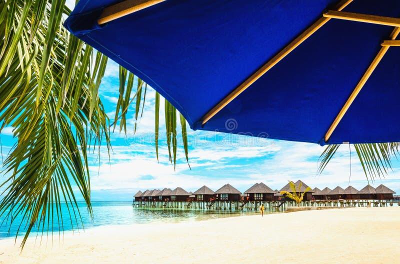Case di legno esotiche sull'acqua e sulla foglia di palma con l'ombrello di sole blu immagine stock