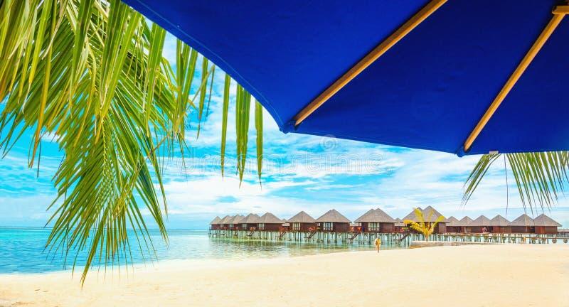 Case di legno esotiche sull'acqua e sulla foglia di palma con l'ombrello di sole blu immagini stock libere da diritti