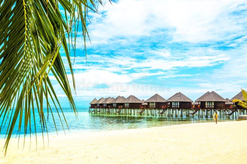 Case di legno esotiche sull'acqua e sulla foglia di palma nella priorità alta fotografie stock libere da diritti