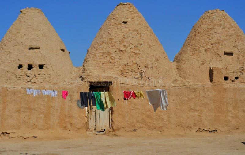 Case tradizionali in harran turchia dell 39 alveare for Case tradizionali