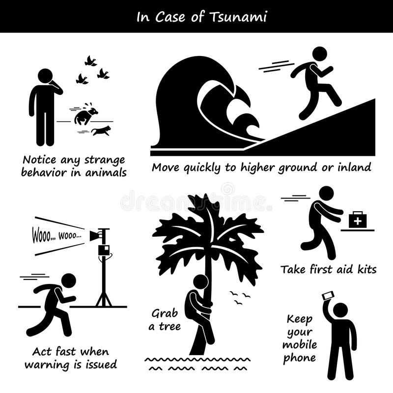 In Case of Tsunami Emergency Plan Icons. A set of human pictogram representing tsunami emergency action plan and preparedness vector illustration