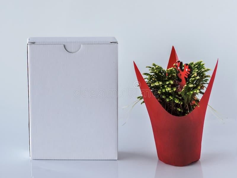 Casella bianca in bianco Decorazione festiva fotografia stock
