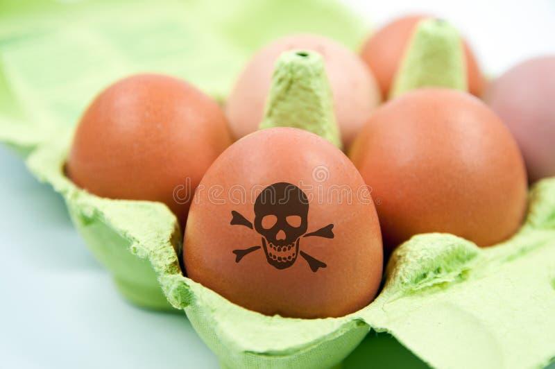 Casella con le uova tossiche del pollo immagini stock libere da diritti
