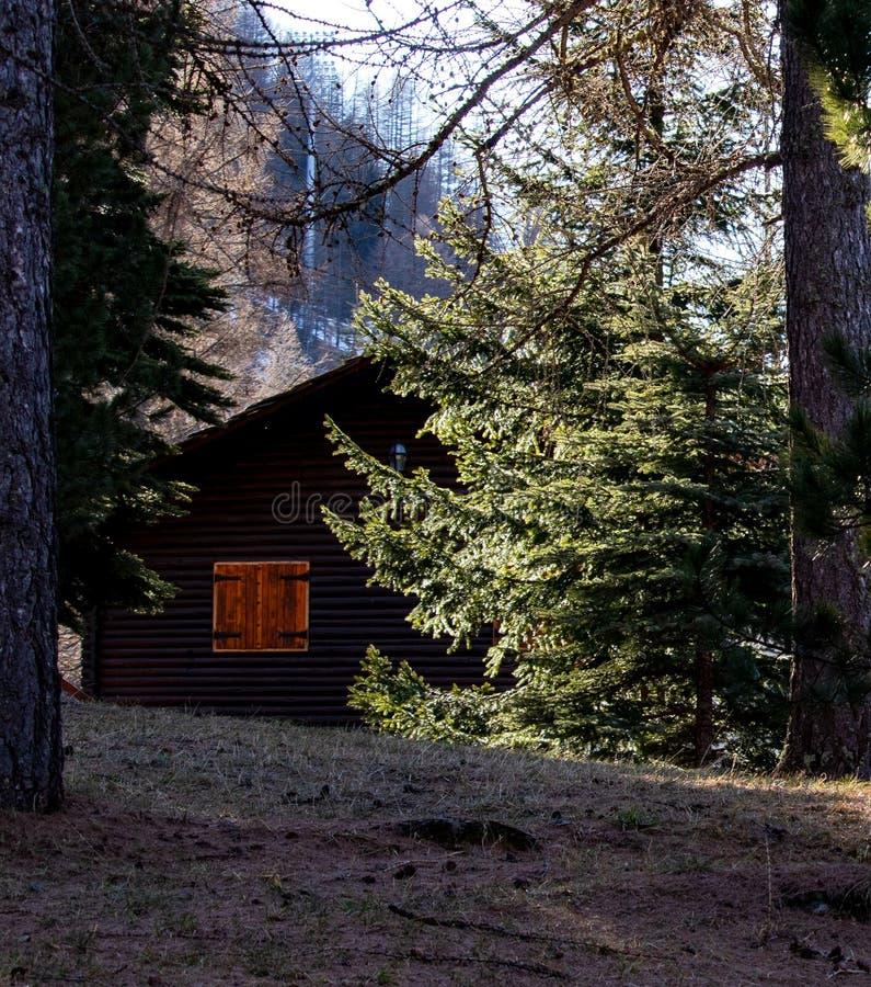 Casetta con la finestra arancio nella foresta immagini stock libere da diritti