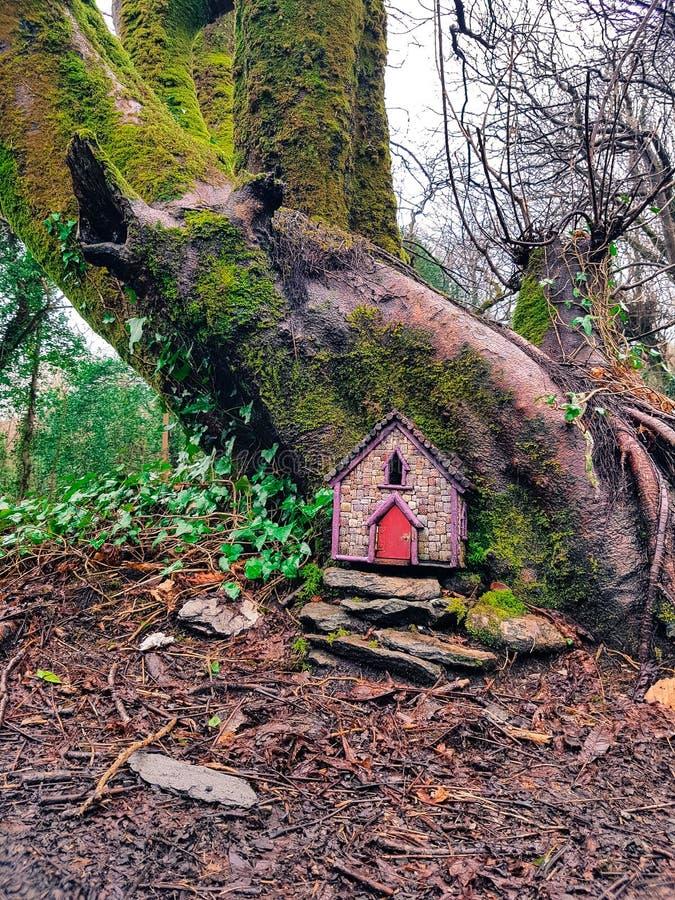 Casetta in mezzo alla foresta fotografia stock libera da diritti