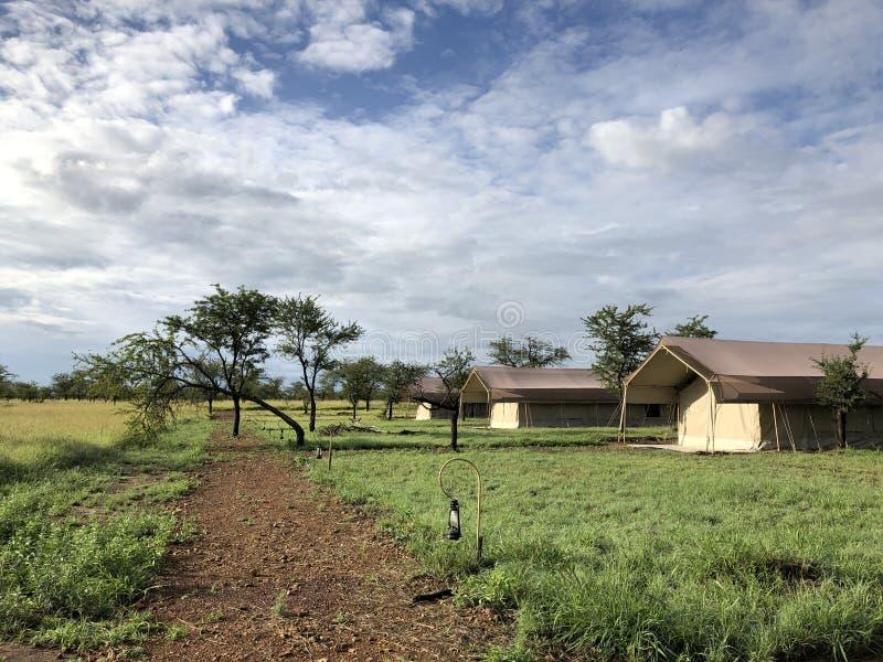 Casetta tented del campo di safari di Serengeti in regione selvaggia, campeggio al parco di Serengeti in Tanzania, Africa fotografia stock
