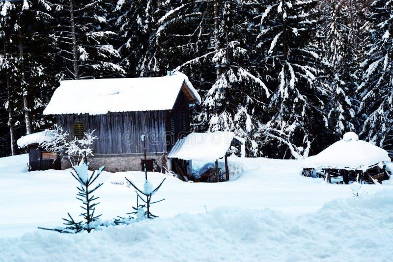 Casette di vecchio coperto da neve, inverno in montagne di Dolomiti, in Cadore, l'Italia immagini stock