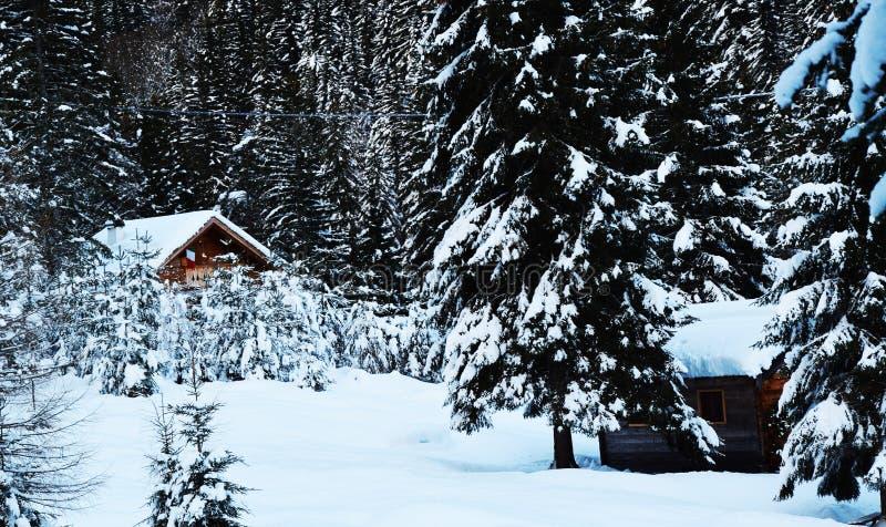 Casette di vecchio legno coperte da neve, alberi, inverno in montagne di Dolomiti, in Cadore, l'Italia immagine stock