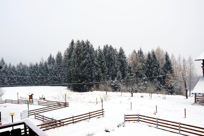 Casette, paesaggio, fondo del tetto della neve, inverno in montagne di Dolomiti, in Cadore, l'Italia fotografia stock