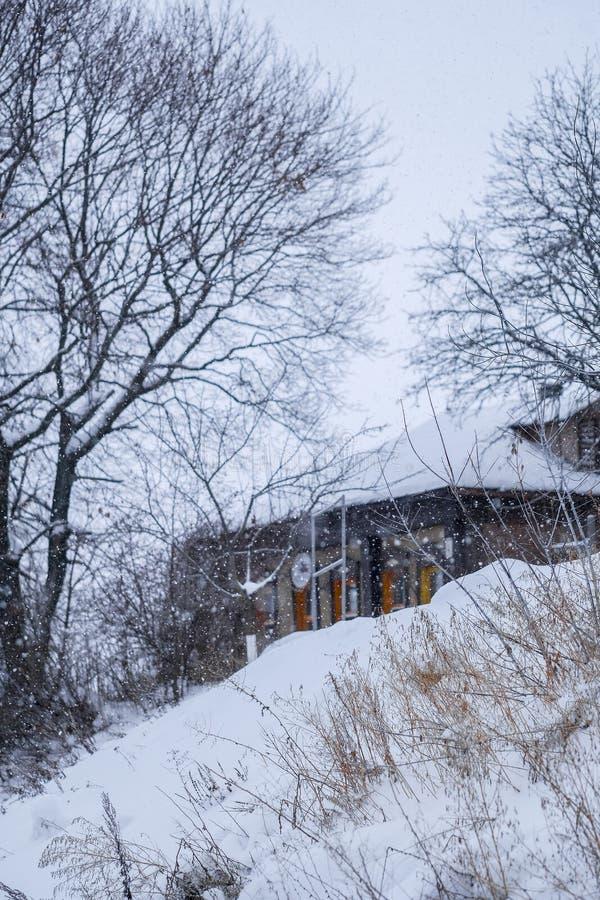 Casette rurali in Zarajsk in precipitazioni nevose immagine stock