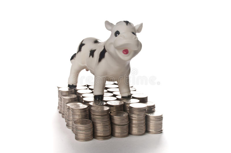 Download Cash cow stock image. Image of isolated, millionaire - 18906069