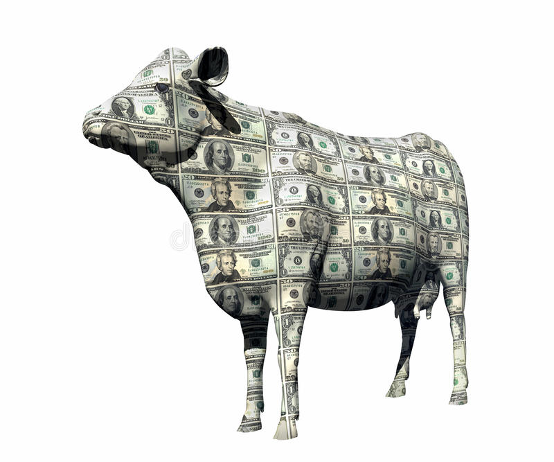CASH COW SAVING RETIREMENT FINANCIAL PLANNING WEALTH MANAGEMENT INVESTMENT FUND CAPITAL GROWTH STOCK. Cash Cow on White Background with Clipping Path Wealth royalty free stock photography