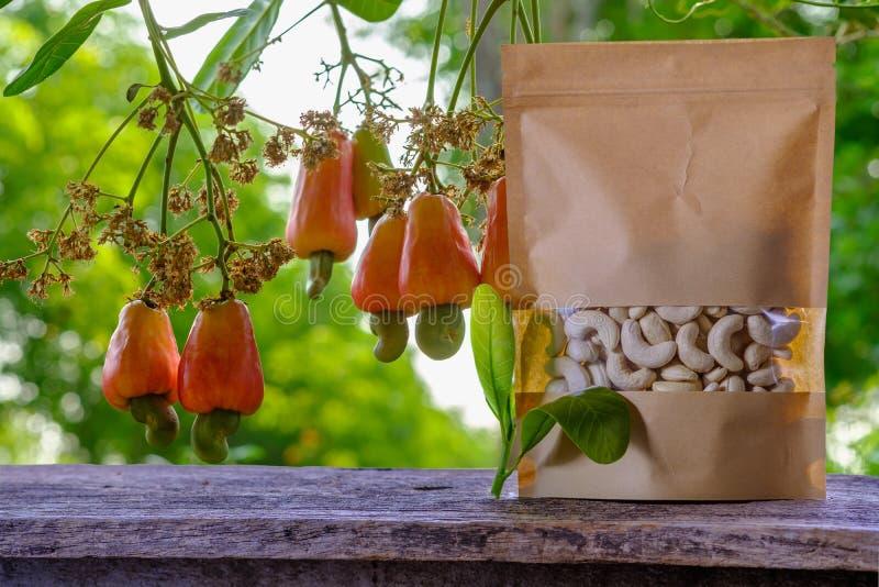 Cashewnoten in de verpakkende zak en het rode fruit royalty-vrije stock afbeelding