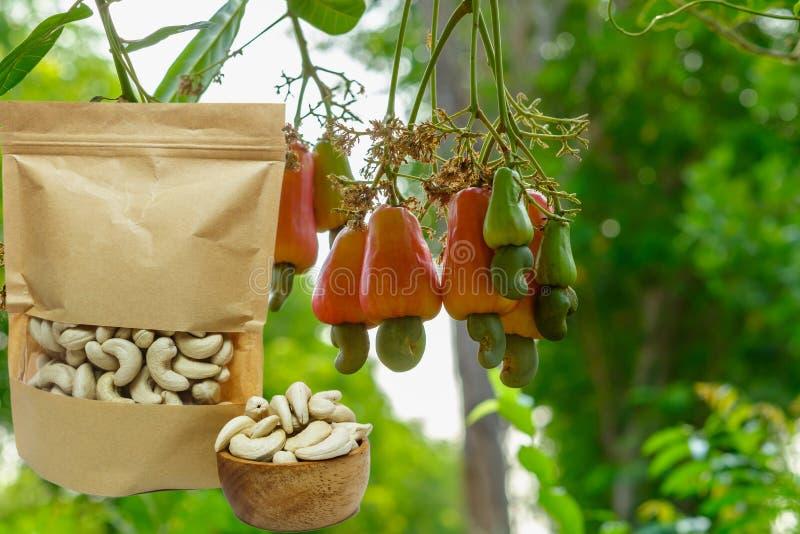 Cashewnoten in de verpakkende zak met rood rijp fruit stock afbeelding