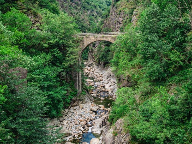 Caslettobrug in Val Grande National Park royalty-vrije stock foto