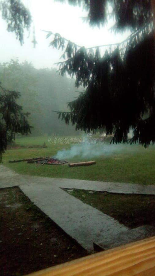 Casoaia Romania rain eco Freedom stock photo