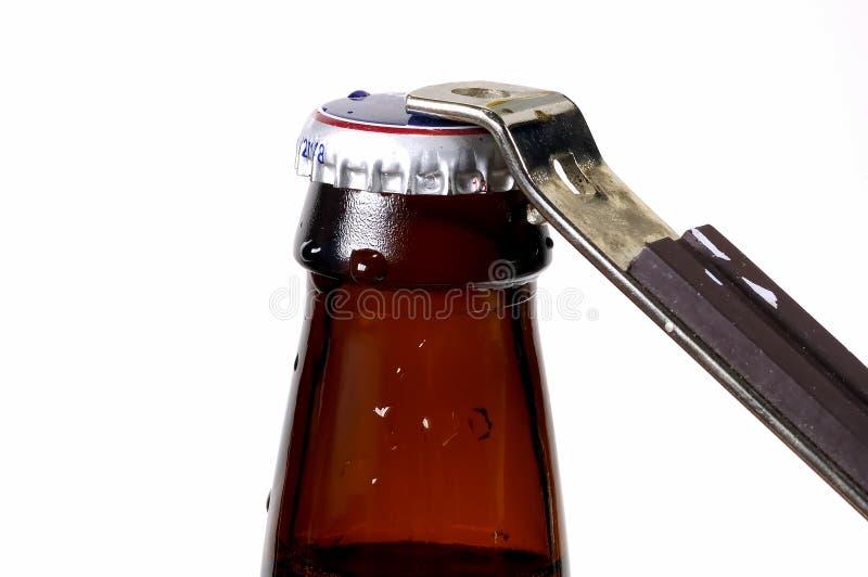Casquillo de la cerveza fotografía de archivo libre de regalías