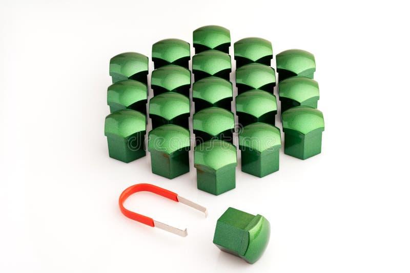 Casquillos para el plástico de las nueces, verdes Primer, fondo blanco fotos de archivo