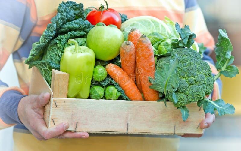 Cassa in pieno di alimento biologico fresco immagine stock