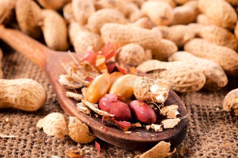 Casse-croûte d'arachides photos stock