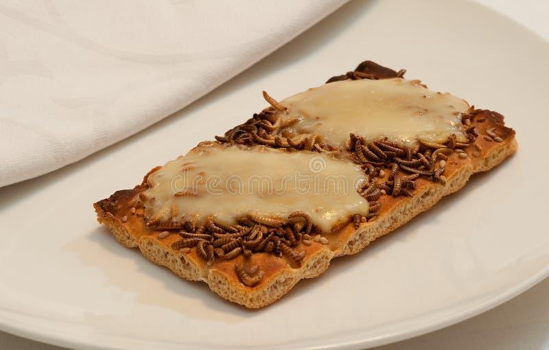 Casse-croûte d'insecte photographie stock
