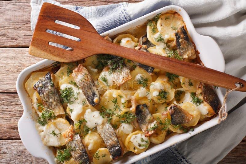 Casserole των πατατών, ρέγγες στη σάλτσα κρέμας στο πιάτο ψησίματος Ho στοκ εικόνα με δικαίωμα ελεύθερης χρήσης