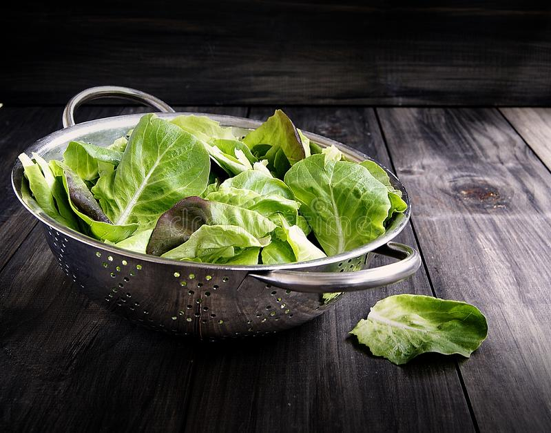 Casserole avec de la salade verte image libre de droits