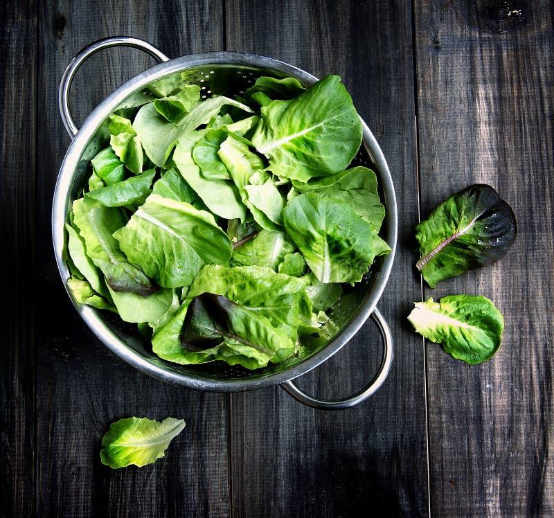 Casserole avec de la salade verte photographie stock libre de droits