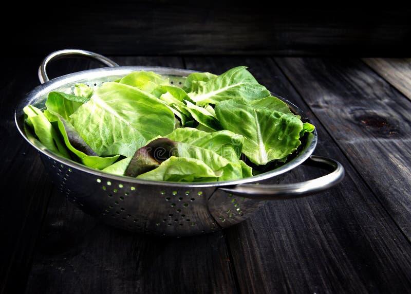 Casserole avec de la salade verte images libres de droits