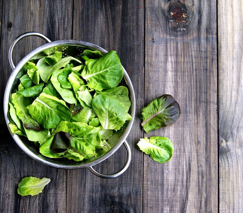 Casserole avec de la salade verte image stock