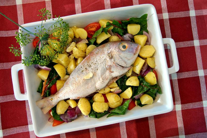 Casserole with fresh gilthead sea bream with vegetable and herbs as top view. Diet vegetarian food. Dorado Royale Fish. Raw dorado fish with spices and stock photos