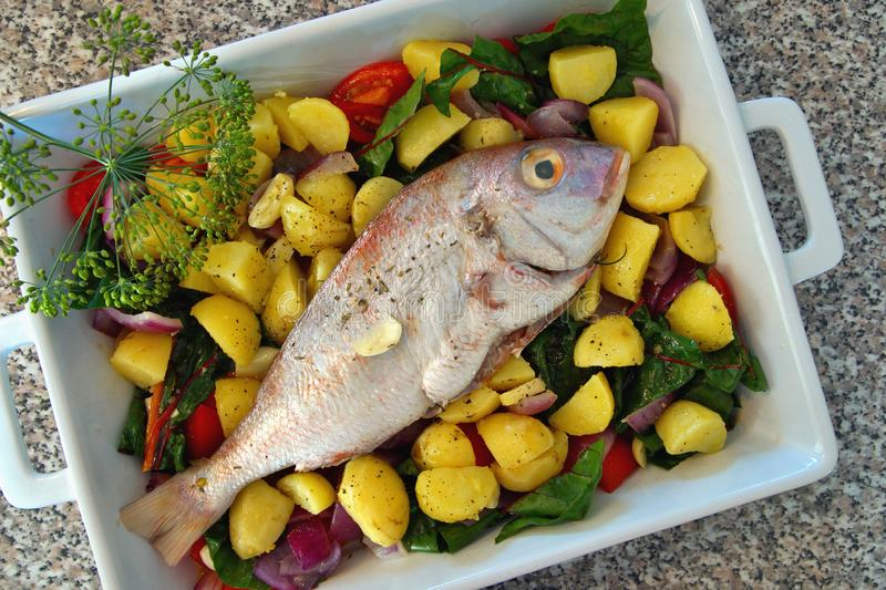 Casserole with fresh gilthead sea bream with vegetable and herbs as top view. Diet vegetarian food. Dorado Royale Fish. Raw dorado fish with spices and stock photo