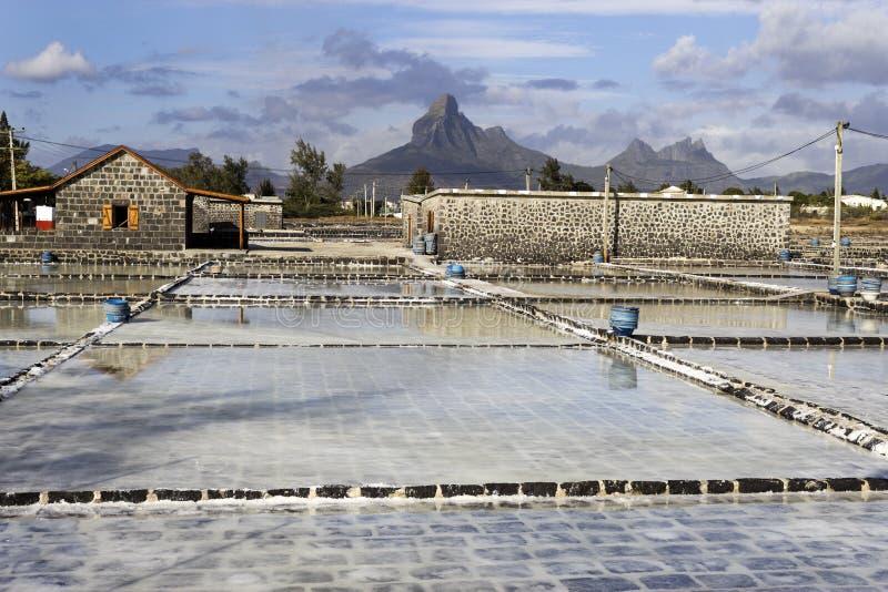 Casseroles de sel au Tamarin photographie stock libre de droits
