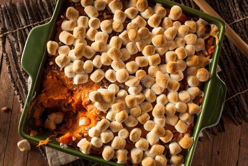 Casseruola casalinga della patata dolce fotografia stock libera da diritti