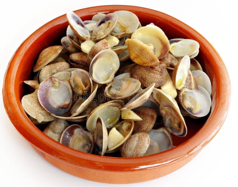 Casseruola con i molluschi immagini stock