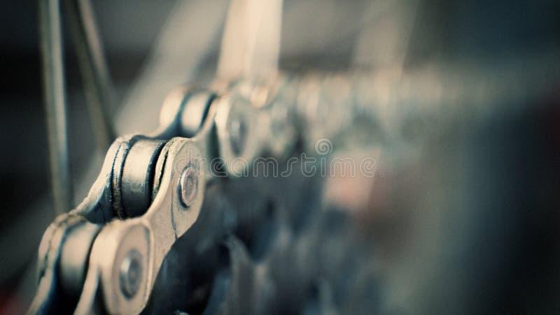 Cassette arrière de vélo de montagne sur la roue avec la chaîne image libre de droits