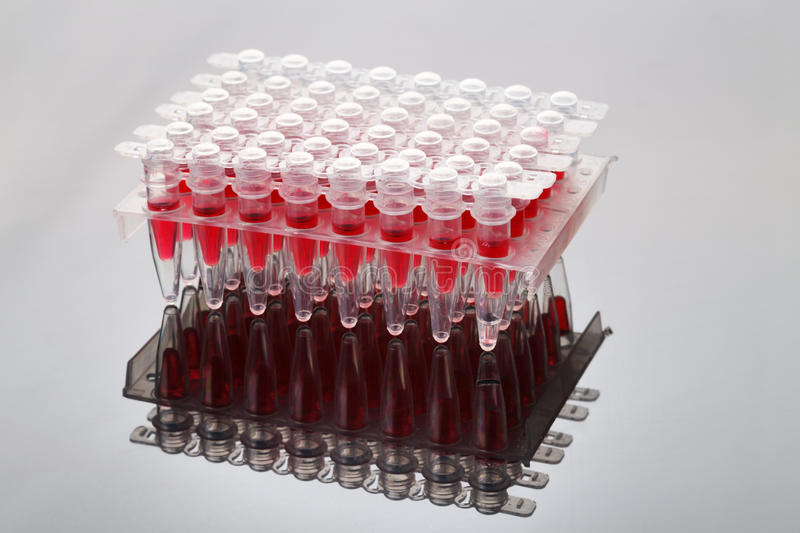 Cassette with tubes, AIDS test stock images