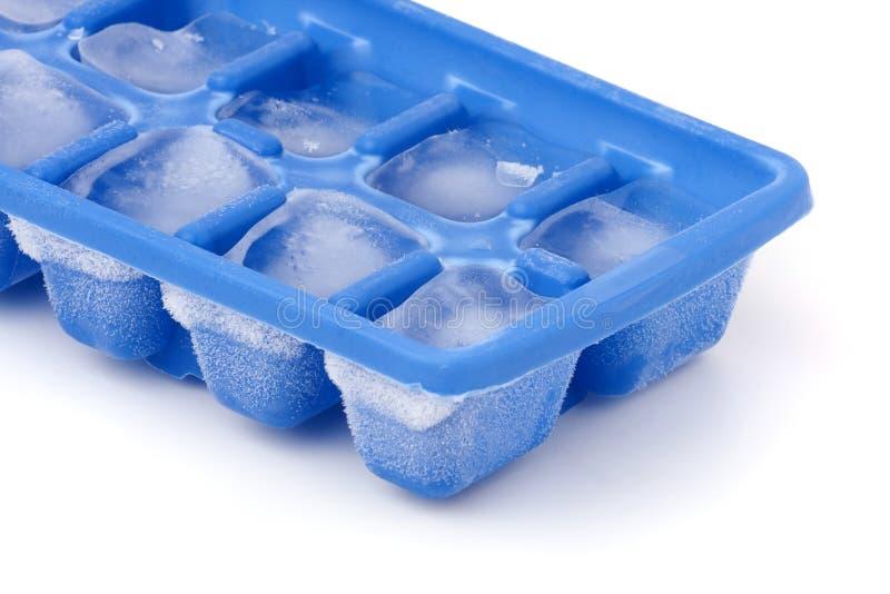 Cassetto congelato del cubo di ghiaccio fotografie stock libere da diritti