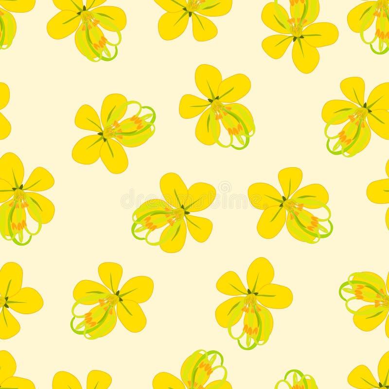 Cassia Fistula - Golden Shower Flower on Beige Ivory Background. Vector Illustration. vector illustration