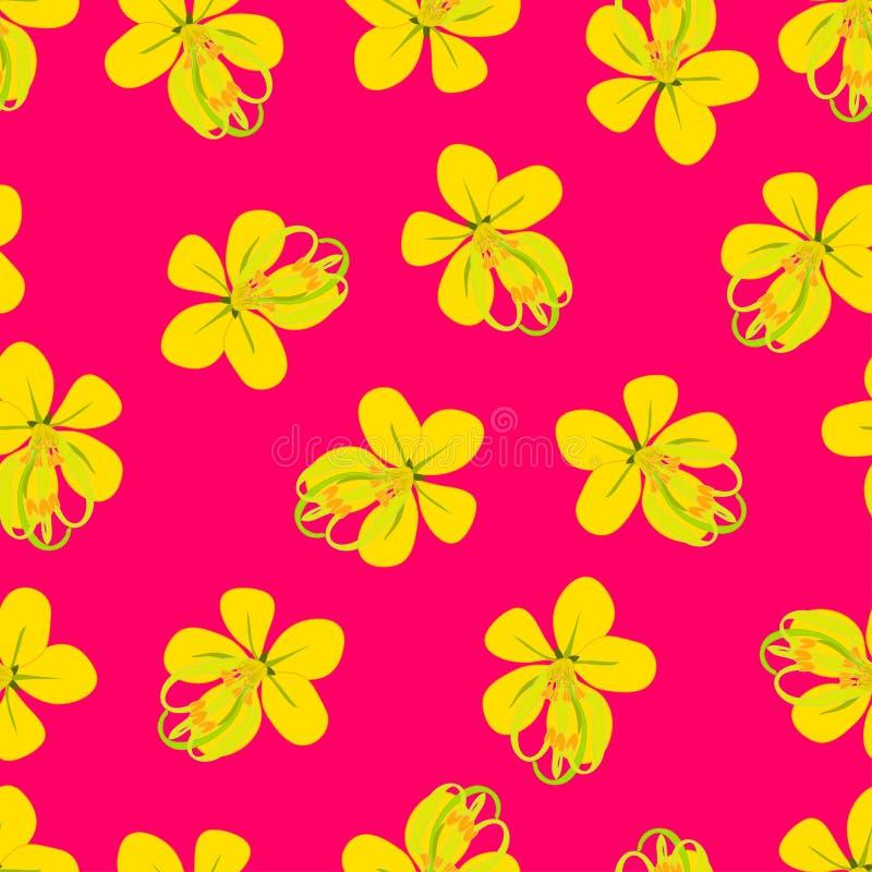 Cassia Fistula - Golden Shower Flower on Pink Background. Vector Illustration vector illustration