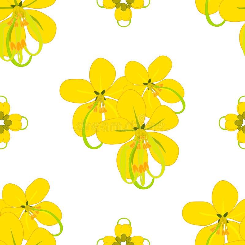 Cassia Fistula Shower Flower royalty free illustration