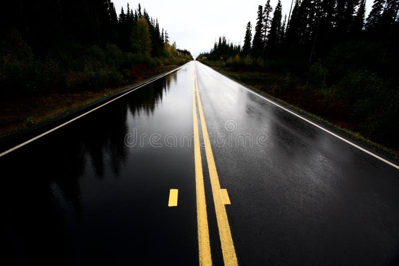 cassiar εθνική οδός υγρή στοκ εικόνες
